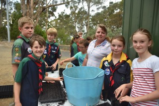 Taroona Scouts at work